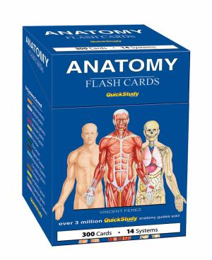 Cards Flash Anatomy Quick Study (SKU 1002835323)