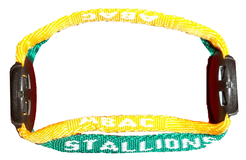 Bracelet With Abac Stallions, Green And Gold (SKU 1001098314)