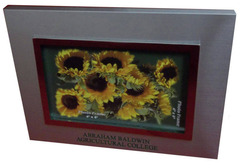 Picture Frame, Silver with  Abra Bald Agri Col in Green (SKU 1005008812)