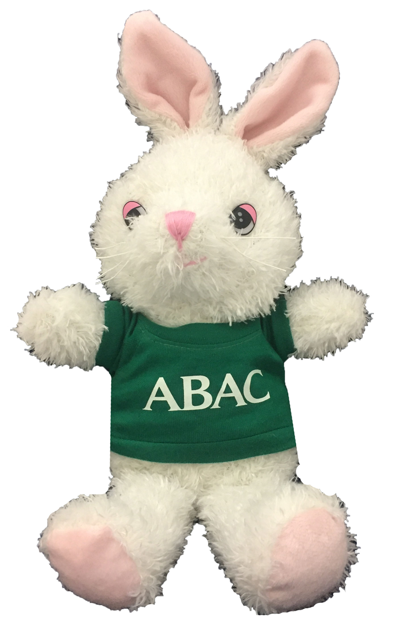 Plush Bunny w/Green Shirt ABAC in White (SKU 1009975912)