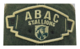 Cap Green Trucker ABAC Stallions Wing Design