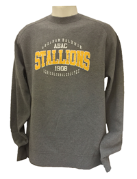 Super Soft Fleece Crew ABAC Stallions Outlined Gold