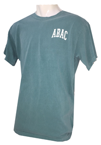 Unisex Shirt with College Name and Circle State Design